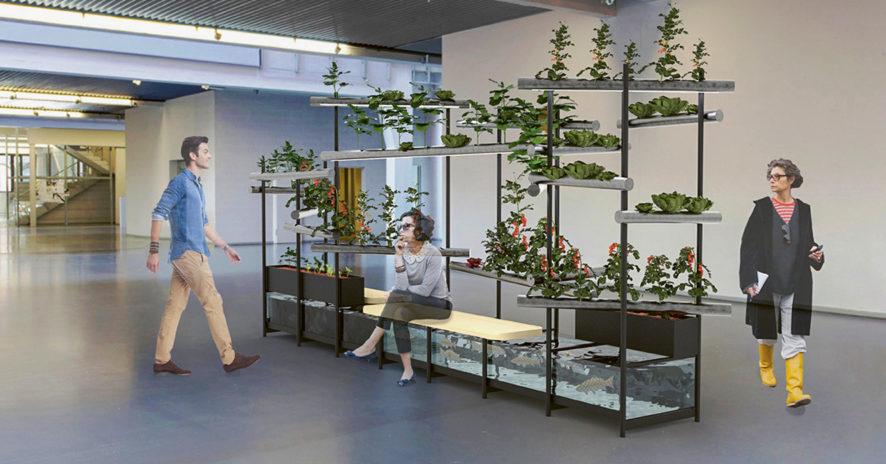 «Quand les designers aident les PME» // www.revuehemispheres.com