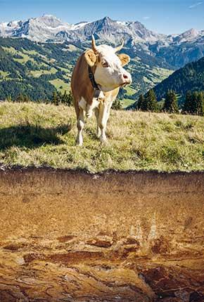 «Qualité des sols» // www.revuehemispheres.com