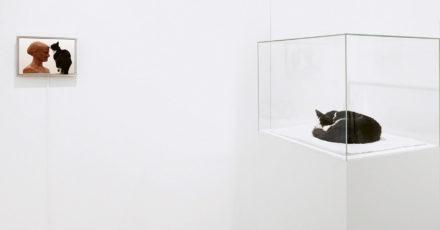«J'aime questionner les évidences» Luzia Hürzeler
