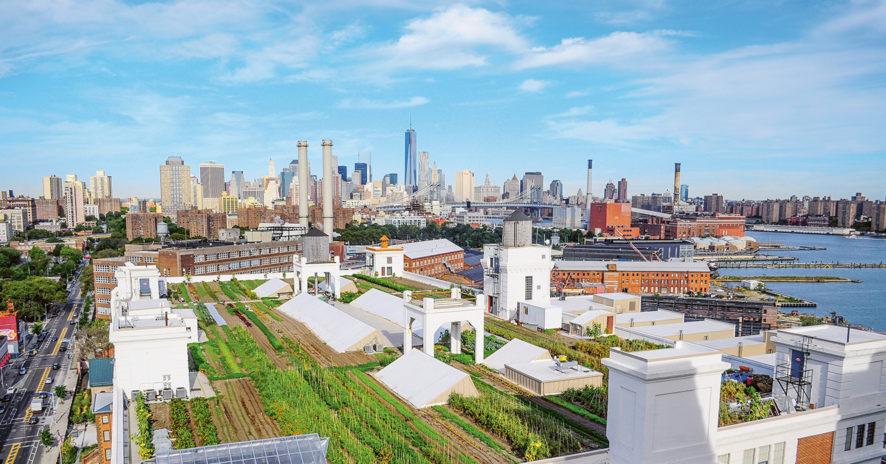 Les fermes urbaines, une agriculture multifonction // www.revuehemispheres.com